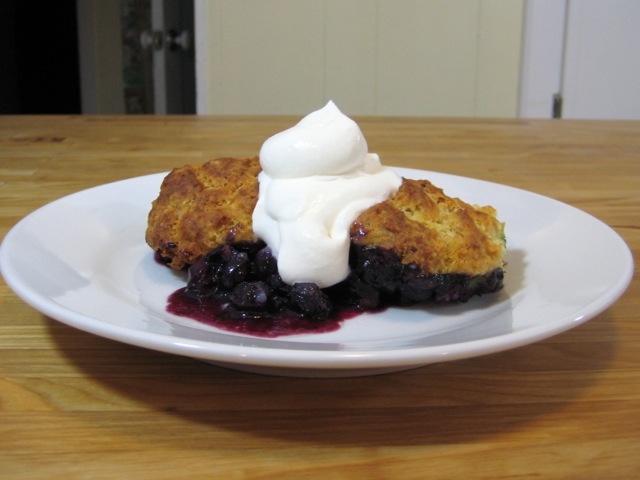 Blueberry cobbler served with whipped cream