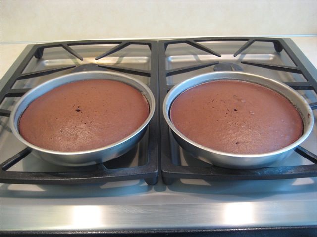 Cakes pans out of oven, ready to cool for 10 minutes