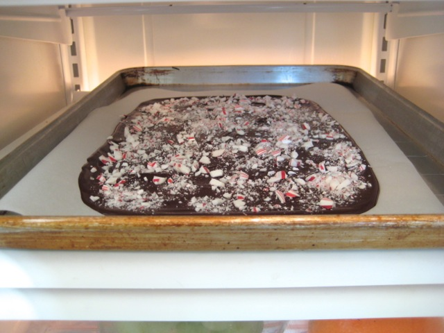 Dark chocolate bark in refrigerator 2 hours or until set